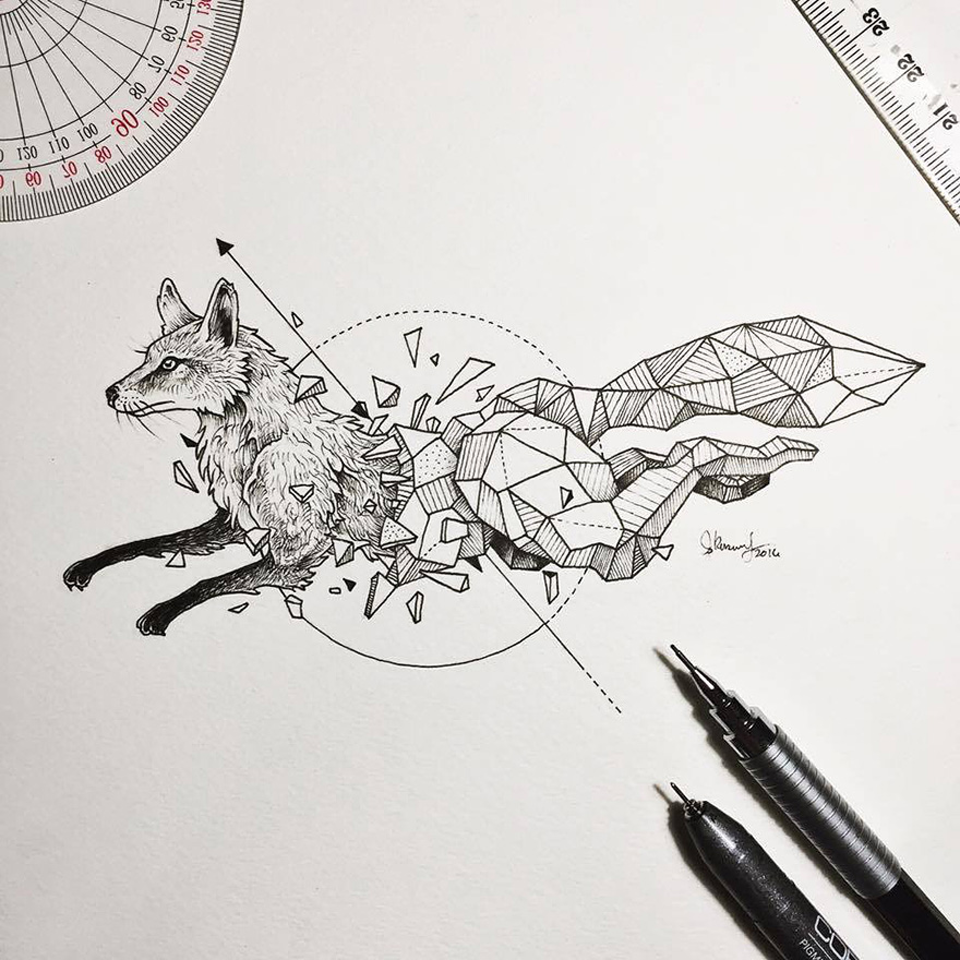 10-Fox-Kerby-Rosanes-Geometry-Coupled-with-Detailed-Drawings-of-Animals-www-designstack-co