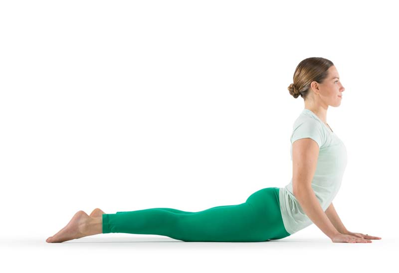 Cobra Pose - Targets Belly Pooch