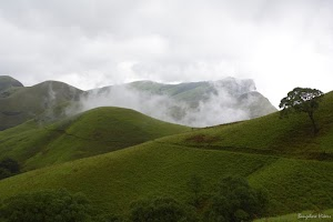 Kudremukh lush green mountains 3