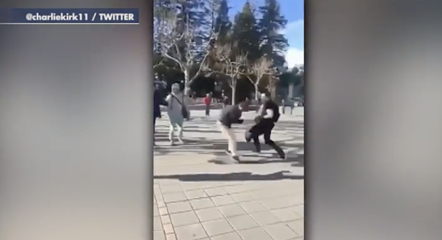"""""""Conservative activist assaulted at UC-Berkeley campus during recruitment drive—caught on video"""""""
