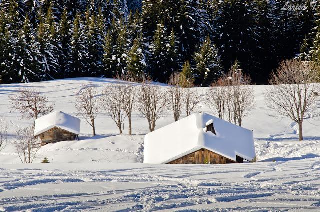 Mont Rond Aravis Mont Blanc Alpii Francezi