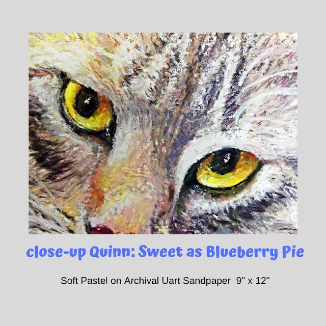Close up of eyes of Quinn portrait by Minaz Jantz