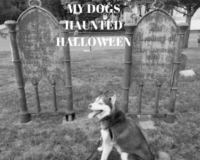 This Halloween, visit haunted historic sites near you!  Haunted houses.  Dogs on Halloween