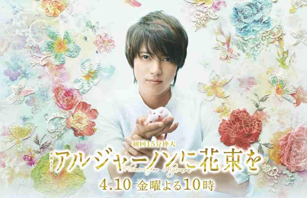 flower for algernon good japanese drama