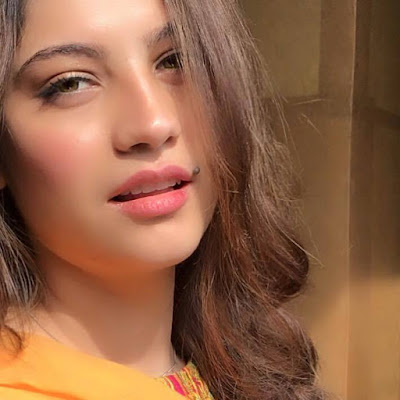 Neelam Muneer Wiki, Height, Weight, Age, Husband, Family and Biography