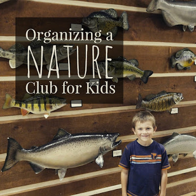 How to organize a nature club for kids