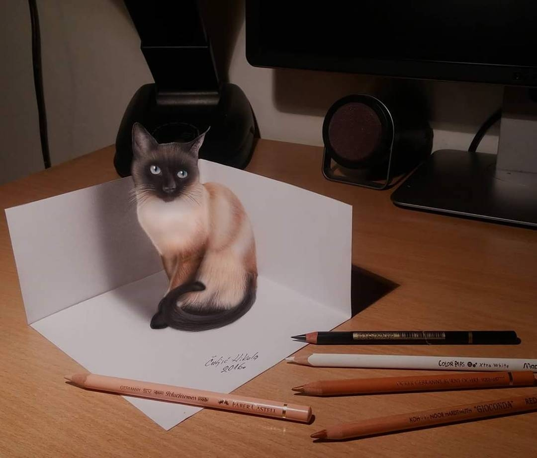 07-Siamese-Cat-Nikola-Čuljić-2D-Realistic-Drawings-that-look-3D-and-a-Video-www-designstack-co