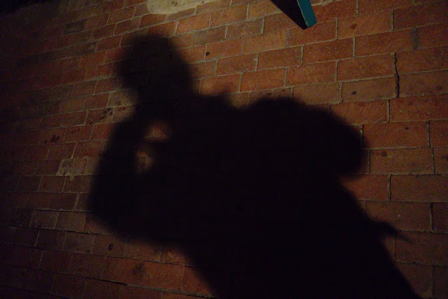 Shadow on a Brick Wall: Dark Side of LC and Low-Fat Diets