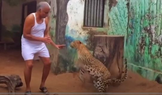 VIDEO: The Indian man who shares his house with leopards and bears