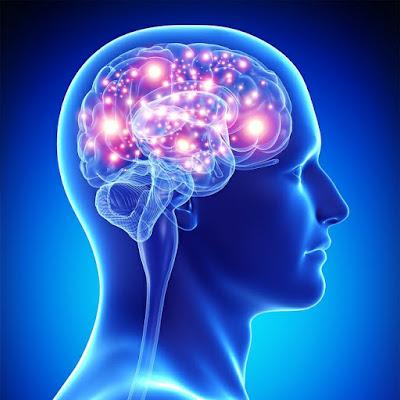 تغييرات إيجابية في الدِّماغ