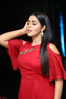 Poorna in Maroon Dress at Rakshasi movie Press meet Cute Pics ~  Exclusive 84.JPG