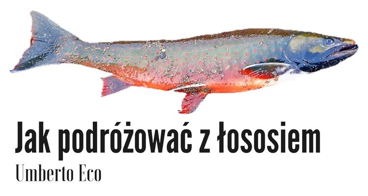 Grafika przedstawiająca łososia.