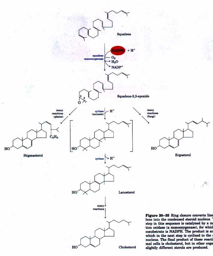 Chemistry: Desember 2012