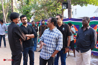 Tamil Film Industry Jallikattu Support Protest of Jallikattu  0083.jpg