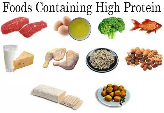 High Protein And High Iron Foods