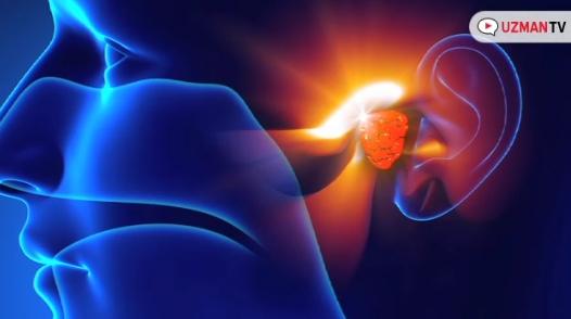 Çocuklarda geniz eti ameliyatı ne zaman gereklidir? - Geniz eti ameliyatı endikasyonları - Adenoidektomi operasyonu endikasyonları