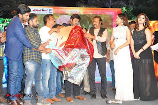 turodu Telugu Movie Audio Launch Stills  0021.jpg