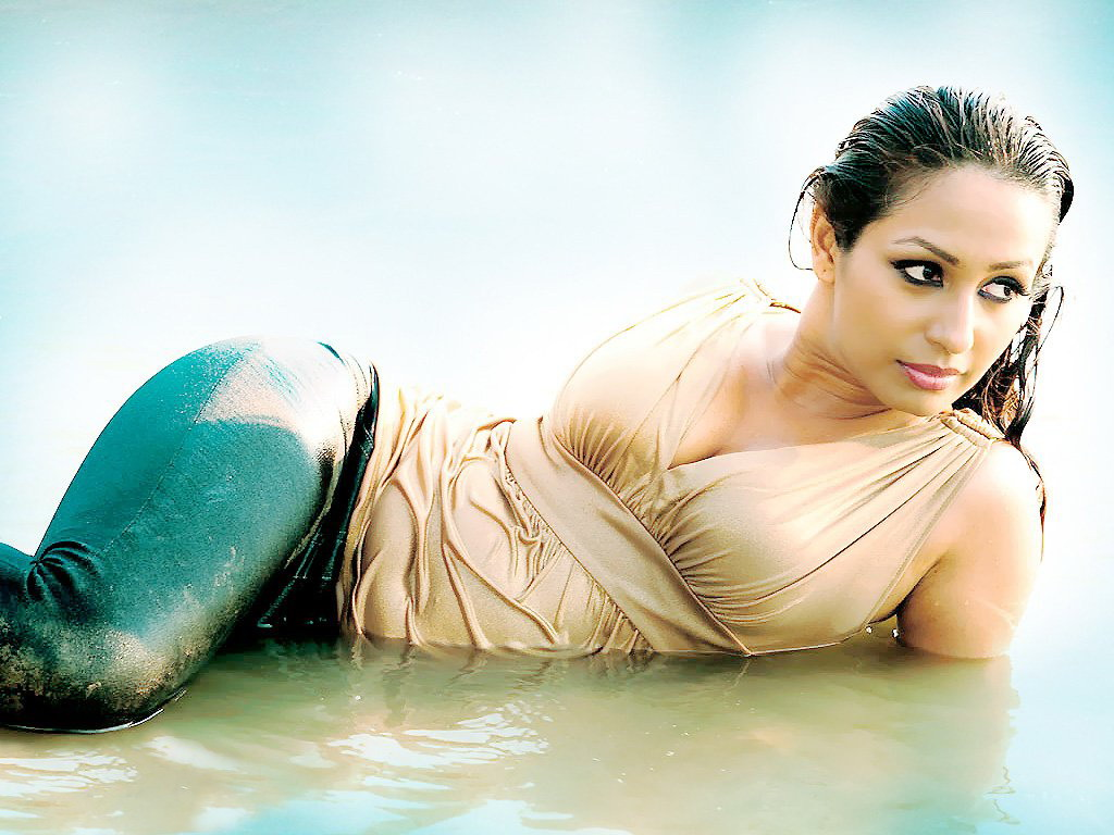 Kashmira Shah Hot High Quality Wallpapers  Kashmira Shah -8608