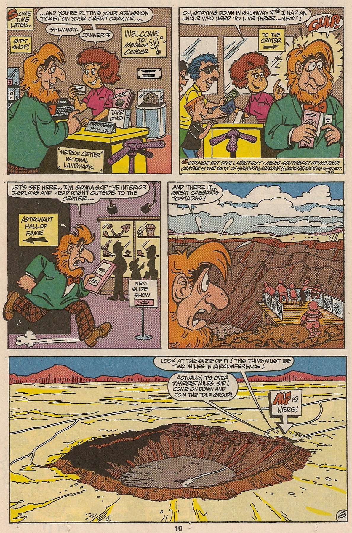 Read online ALF comic -  Issue #47 - 12