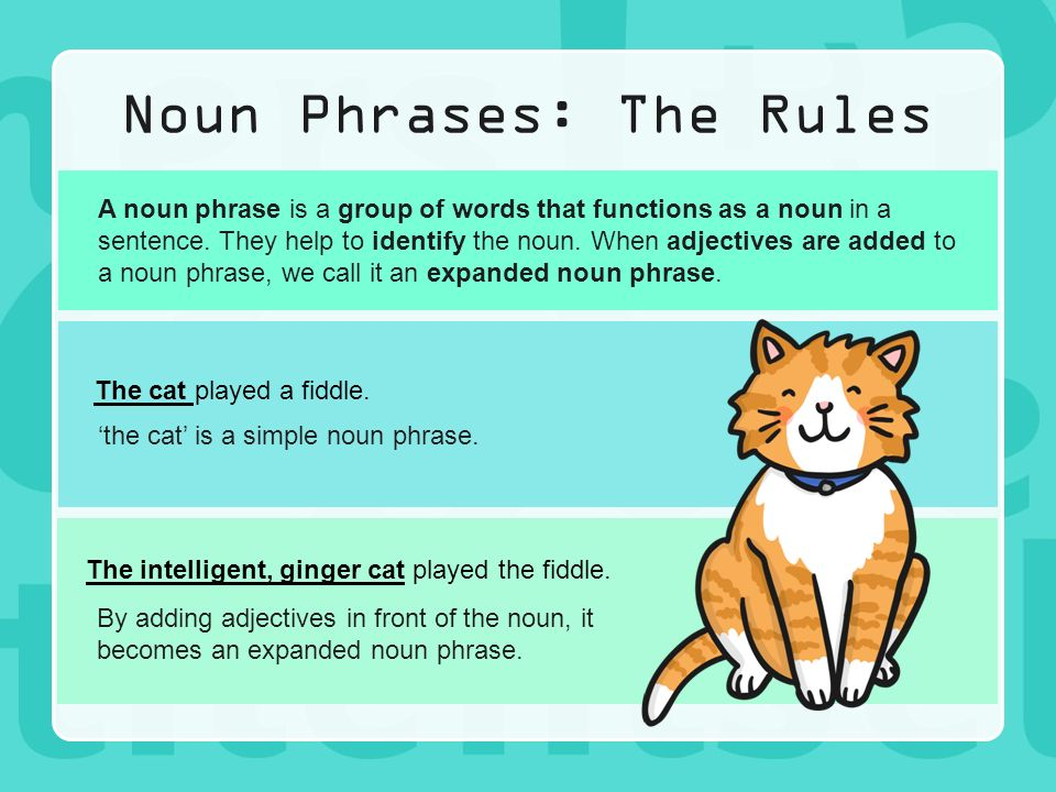 nouns and noun phrases Attributive nouns, also called noun  a noun phrase is a group of two or more words that function together as a noun in a sentence noun phrases consist of a noun.