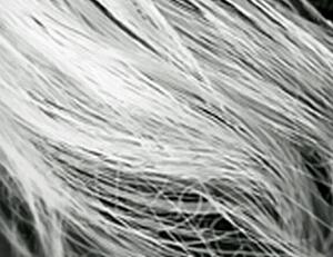 Cara alami menghilangkan rambut uban