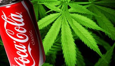 Coca-Cola estuda lançar bebida à base de maconha