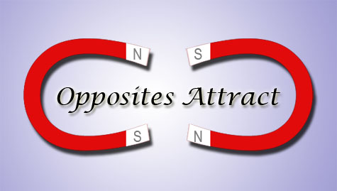 Do opposites attract essay
