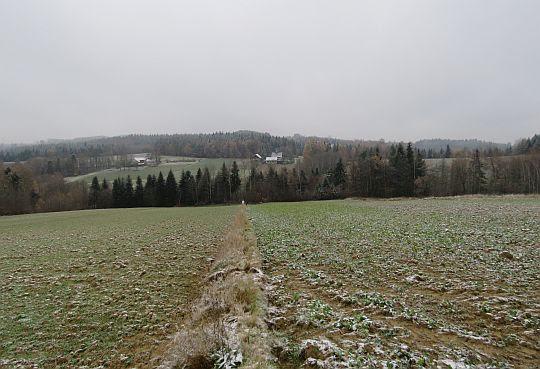 Pola przed Sucha Górą.