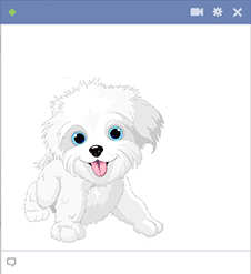 White puppy sticker for Facebook