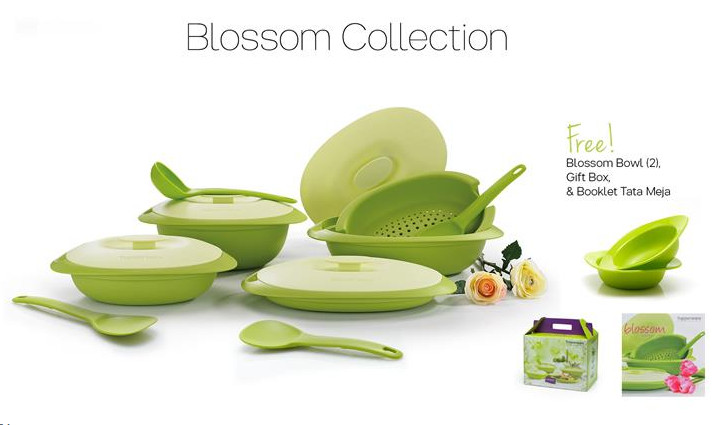 Tupperware Blossom Collection Promo November 2016