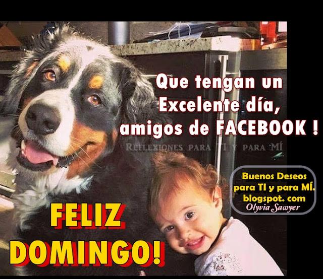 Que tengan un Excelente día, amigos de FACEBOOK !  FELIZ DOMINGO !!!