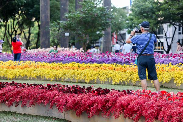 勤美誠品綠園道「花閃」生命的禮讚,花藝創作快閃活動只有三天