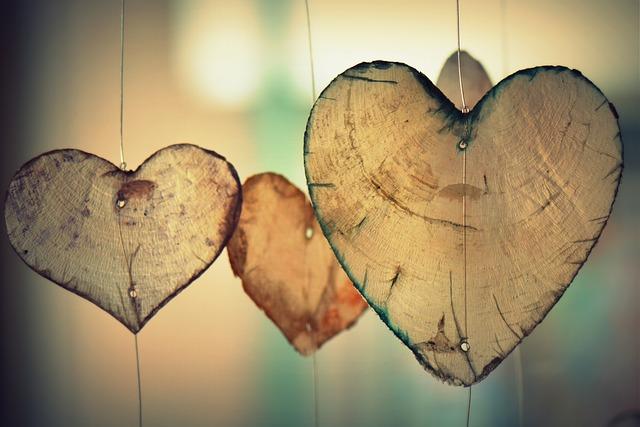 Dinamica Dentro e fora do coração