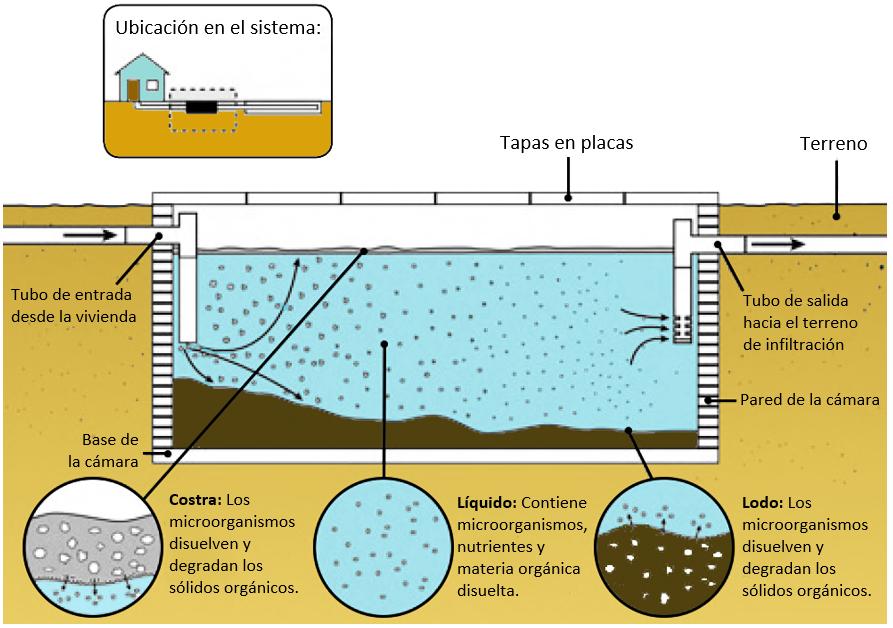 Sistema De Tratamiento De Aguas Residuales Eco Casa Amigable Con La Naturaleza