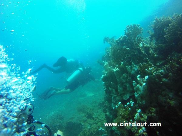 gambar buoyancy penyelam