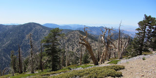 View west from Mt. Baden-Powell