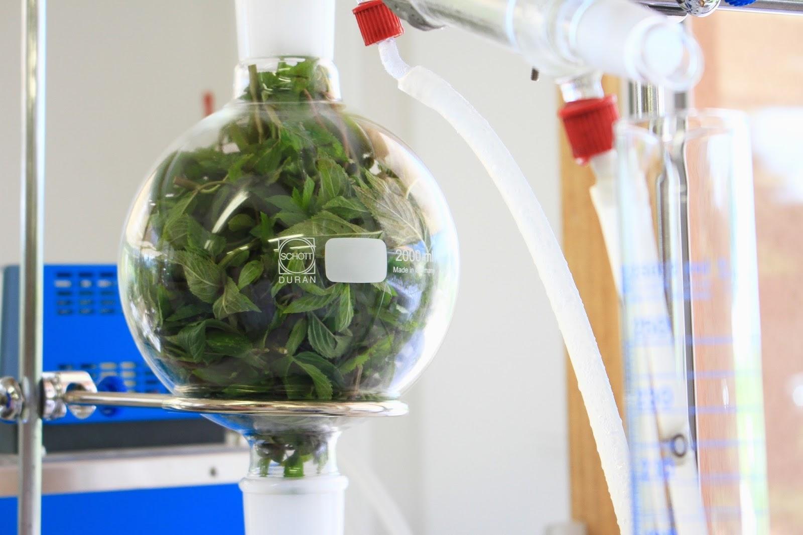 laboratoire sanoflore