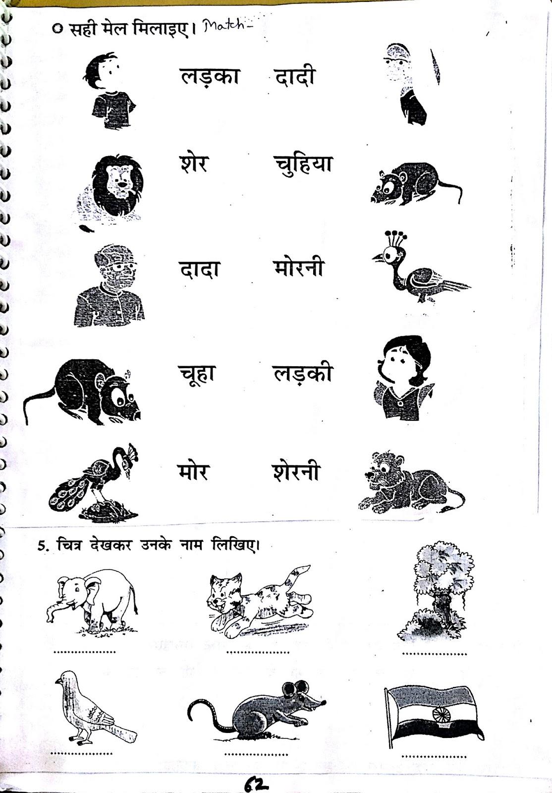 Hindi Worksheet Z