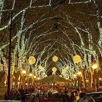 Como sobrevivir al encendido de las luces de navidad