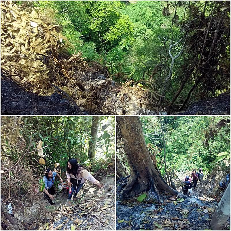 Menikmati Keindahan Alam Air Terjun Mamabu, Sumatera Utara