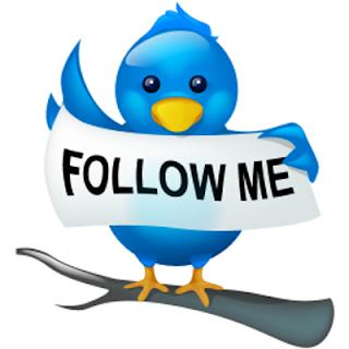 كيفية زيادة المتابعين في التويتر بكل سهولة