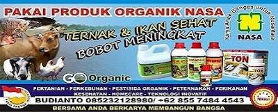agen-resmi-nasa-di-sumarorong-mamasa-085232128980