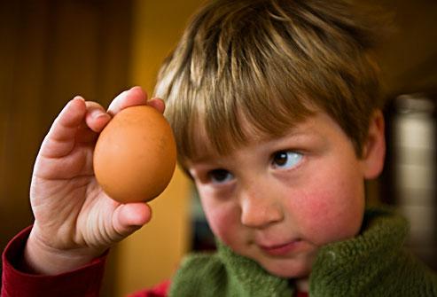 Anak Alergik Makan Telur?