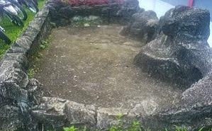 cara budidaya ikan gurame di kolam tembok,tanah,terpal,beton,agar cepat besar,membuat,pemijahan,pakan ikan gurame kecil,