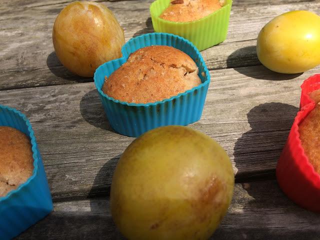 Muffinki graham z żółtymi śliwkami renklodami