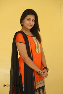 Telugu Actress Chandana Stills in Salwar Kameez at Karam Dosa Movie Press Meet  0011.JPG