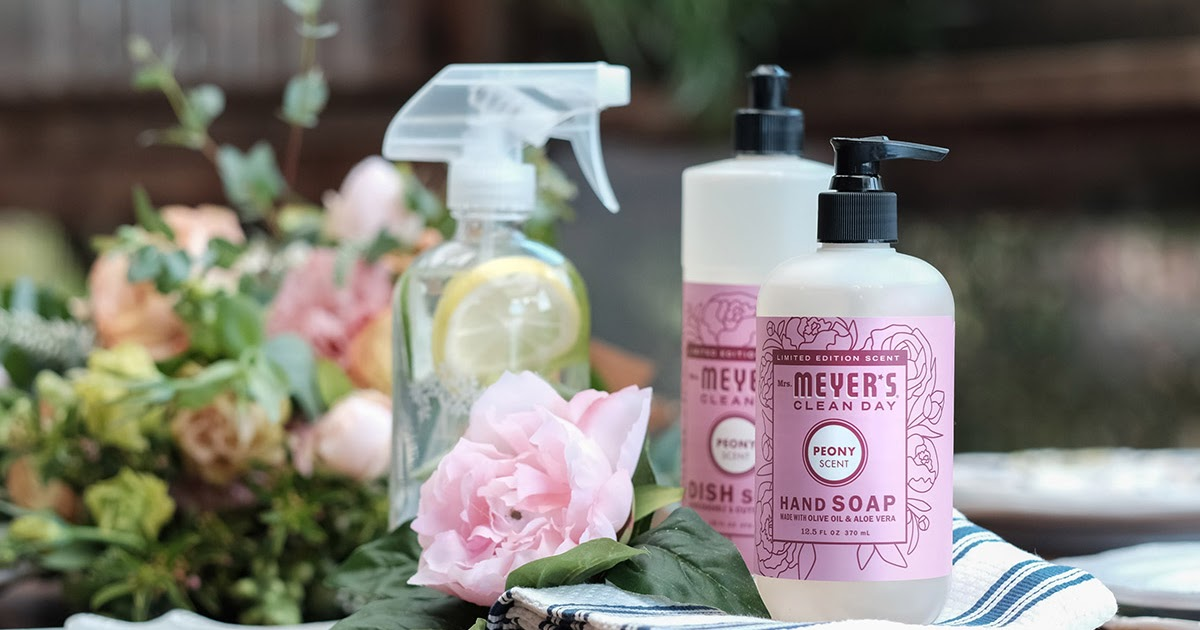 The Lovely Side My 5 Favorite Spring Cleaning Essentials