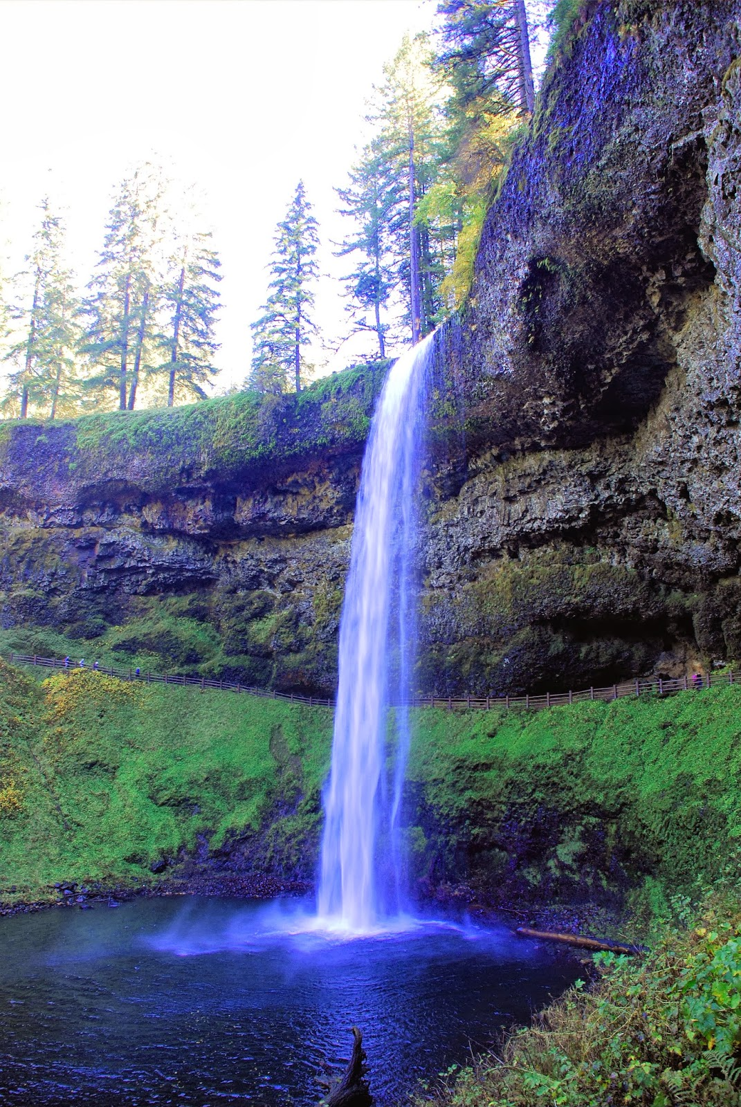 Silver Falls State Park Oregon Map.Everything Oregon And Beyond Silver Falls State Park Trail Of