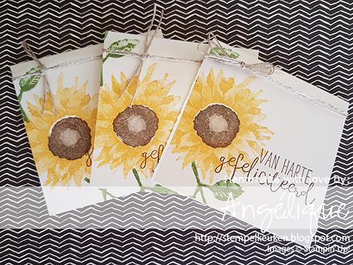 Stampin' Up! producten koop je bij de Stempelkeuken stempelkeuken@gmail.com #stempelkeuken #stampinup #stampinupnl #paintedharvest #autumn #herfst #harvest #stempelen #creatief #pizza #pizzadoos #creative #papercrafting #thread #sunflower #sunflowers #denhaag #thehague #nederland #creatiefmetpapier #pons #zonnebloem