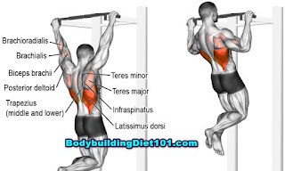 Doing chin ups help in building your muscles in the forearms, triceps, upper back and lats